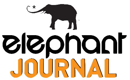 elephant-journal